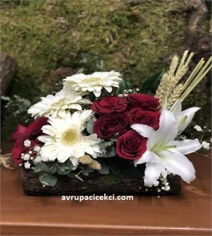 Kütükte Çiçek